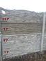 Забор железобетонный (ажурный) - Изображение #7, Объявление #1260166